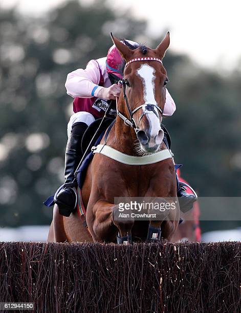 Gavin Sheehan riding Emerging Force clear the last to win The bet365 Beginners' Steeple Chase at Hereford racecourse on October 6 2016 in Hereford...