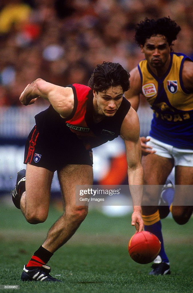 AFL Finals - Essendon v West Coast : News Photo