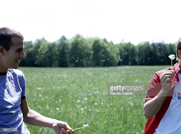 gay couple (20-25 years) teasing each other with dandelion - この撮影のクリップをもっと見る 2025 stock pictures, royalty-free photos & images