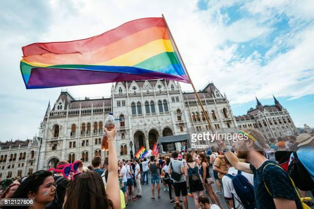 gay pride parade in boedapest, hongarije - menigte voor het parlement van boedapest - hungary stockfoto's en -beelden