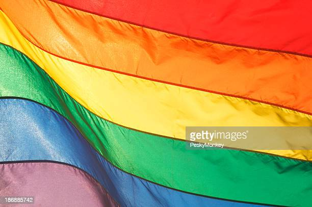 Gay Pride Rainbow Flag Shining in Bright Sunlight