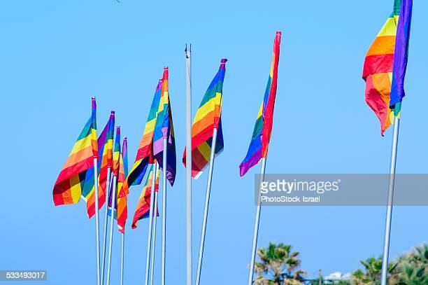 Gay rainbow flags