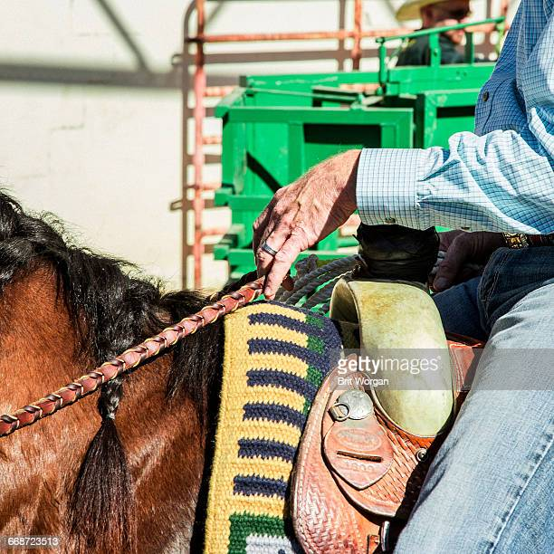 gay rodeo - phoenix arizona stock pictures, royalty-free photos & images