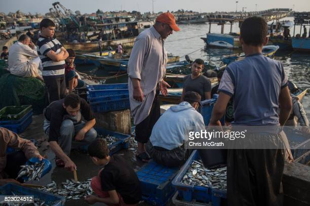 Gaza fishermen are seen unloading their nights catch after returning to port on July 22 2017 in Gaza City Gaza Gaza's fishermen suffer under the...
