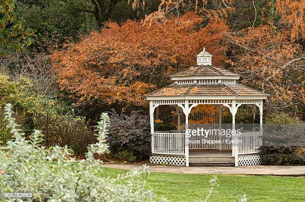 Gazebo Against Trees During Autumn