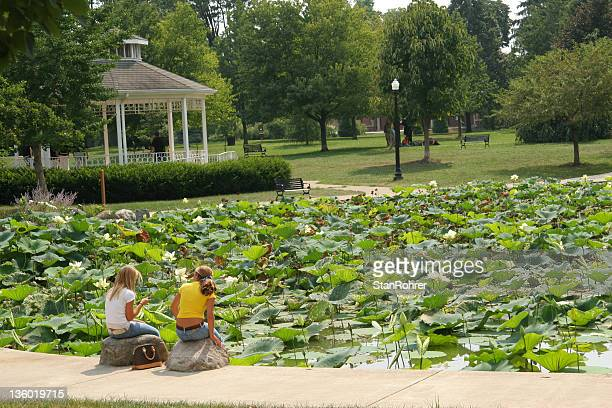 gazebo and lily pond. columbus, ohio. - columbus ohio stock pictures, royalty-free photos & images