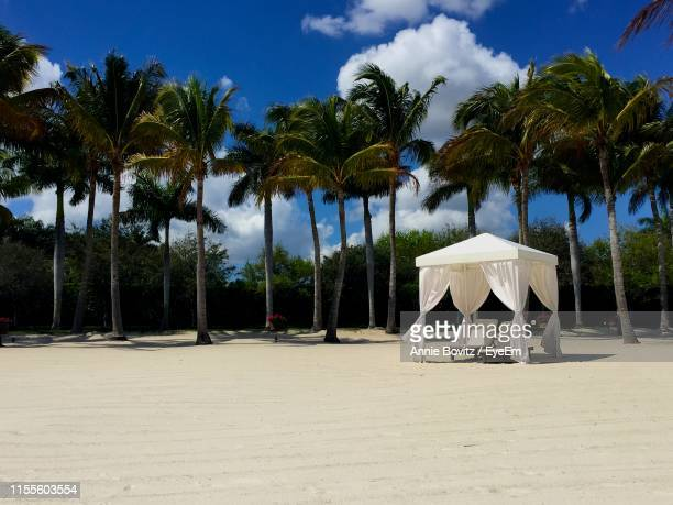 gazebo and palm trees on beach against blue sky - gazebo stock pictures, royalty-free photos & images