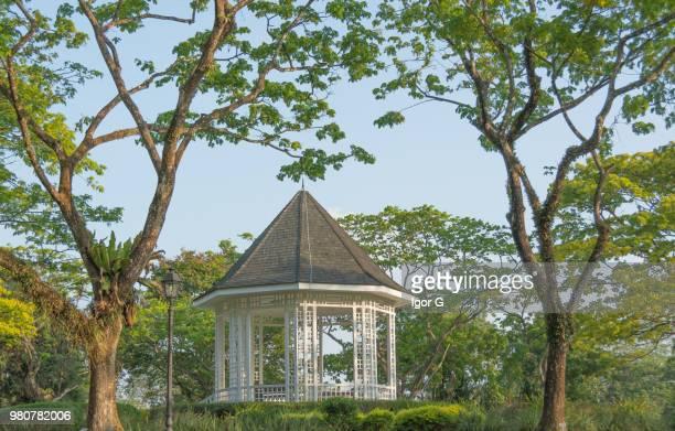 gazebo garden - singapore botanic gardens stock photos and pictures