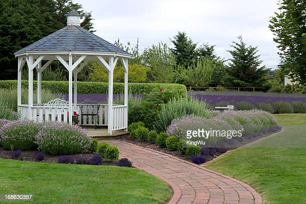 gazebo in garden - gazebo stock pictures, royalty-free photos & images