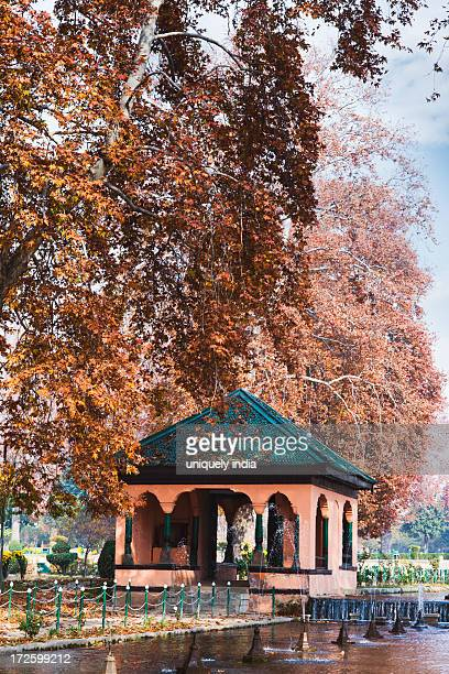 gazebo surrounded by trees in a garden, shalimar bagh, srinagar, jammu and kashmir, india - kashmir valley stock photos and pictures