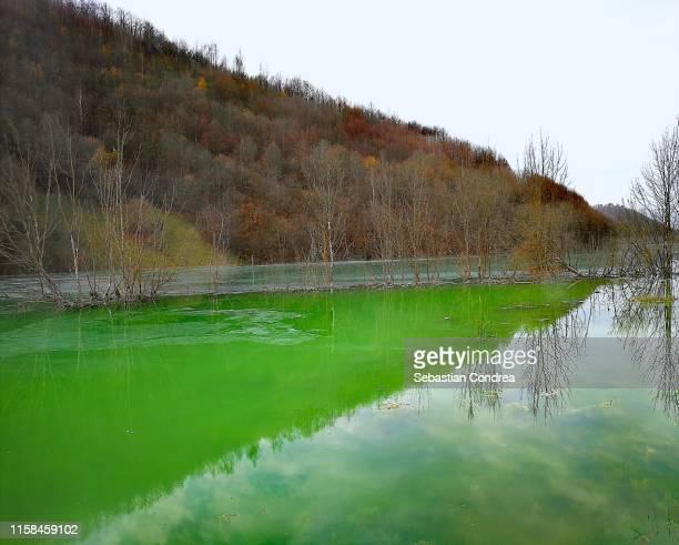 Geamana Lake, Apuseni Country, Romania.