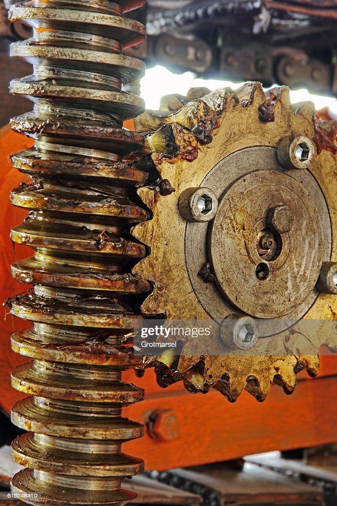 Gear wheel, cogs and screw of industry machine. : Foto de stock