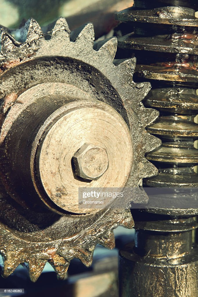 Gear wheel, cogs and screw of old machine. : Foto de stock