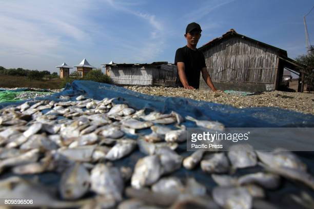 Gebang Mekar Village has a distinctive characteristic as a salted fish producing region Twothirds of the needs of salted fish in Cirebon Regency are...