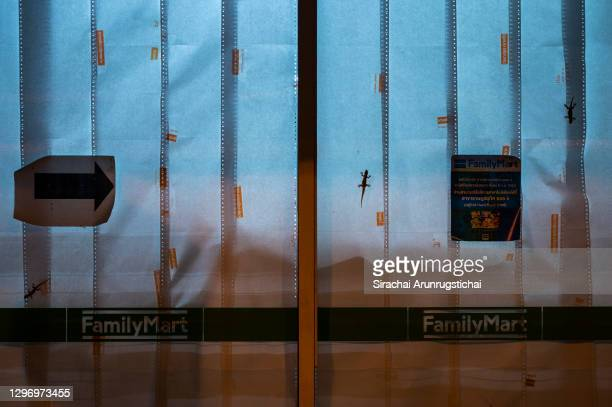 Geckos crawl on the glass panel of a shuttered convenient store along Patong Beach on January 17, 2021 in Phuket, Thailand. Thailand's...