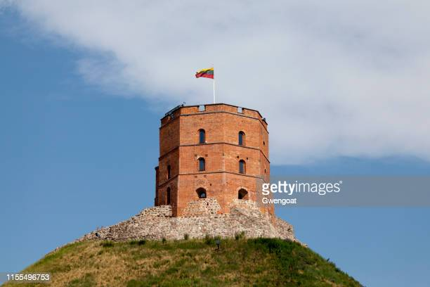 gediminas' tower in vilnius - vilnius stock pictures, royalty-free photos & images