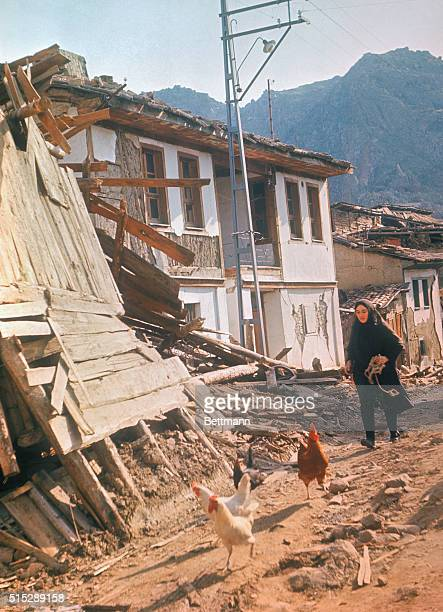 A Turkish woman tries to round up her chickens in the earthquake devastated town of Gediz The quake which flattened most of the city have taken at...