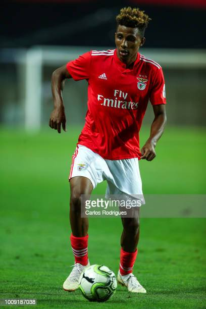 Gedson Fernandes from SL Benfica during the match between SL Benfica v Lyon for the International Champions Cup Eusebio Cup 2018 at Estadio do...