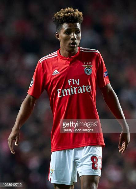Gedson Fernandes of Benfica looks on during the Group E match of the UEFA Champions League between SL Benfica and Ajax at Estadio da Luz on November...