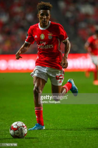 Gedson Fernandes of SL Benfica during the Liga Nos round 9 match between SL Benfica and Portimonense SC at Estadio da Luz on October 30 2019 in...