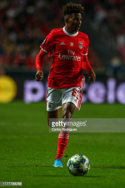 Gedson Fernandes of SL Benfica during the UEFA Champions League group G match between SL Benfica and Olympique Lyon at Estadio da Luz on October 23...