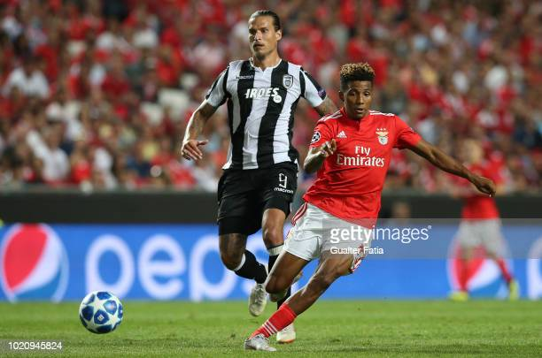Gedson Fernandes of SL Benfica fights for the ball with Aleksandar Prijovic of PAOK during the UEFA Champions League Play Off match between SL...