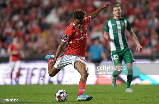 Gedson Fernandes of SL Benfica in action during the Liga NOS match between SL Benfica and Rio Ave FC at Estadio da Luz on November 2 2019 in Lisbon...