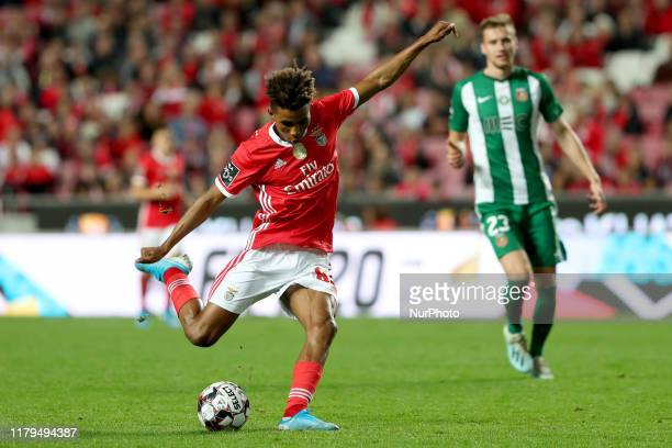 Gedson Fernandes of SL Benfica in action during the Portuguese League football match between SL Benfica and Rio Ave FC at the Luz stadium in Lisbon...
