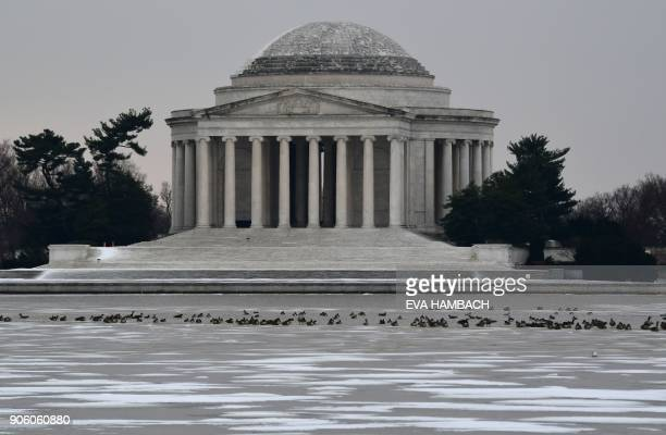 Geese flock on the icedover Tidal Basin in front of the Jefferson Memorial in Washington DC January 17 2018 / AFP PHOTO / Eva HAMBACH