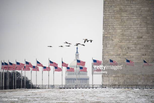 Geese fly over the National Mall near the Washington Monument and the U.S. Capitol in Washington, D.C., U.S., on Thursday, Feb. 18, 2021. After a...