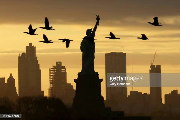 Geese fly past the Statue of Liberty as the sun rises in New York City on May 24 2020 as seen from Jersey City New Jersey