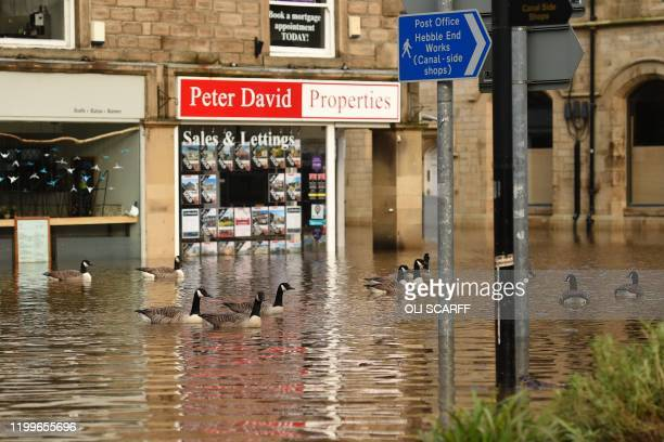 Geese take advantage of the conditions as floodwater fills the streets of Hebden Bridge, northern England, on February 9 as Storm Ciara swept over...