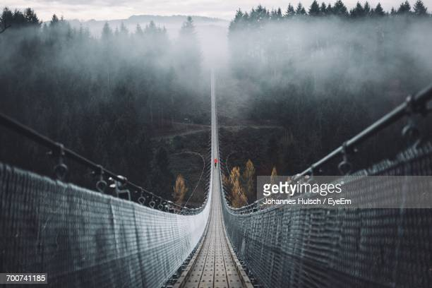 geierlay hangeseilbrucke over valley during foggy weather - high up stock photos and pictures