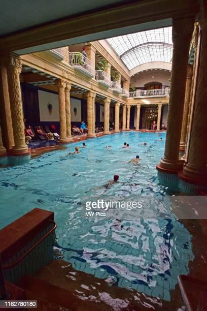 Banos Gellert.World S Best Gellert Baths Stock Pictures Photos And