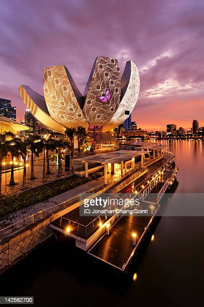 gem of bay - singapore stock pictures, royalty-free photos & images