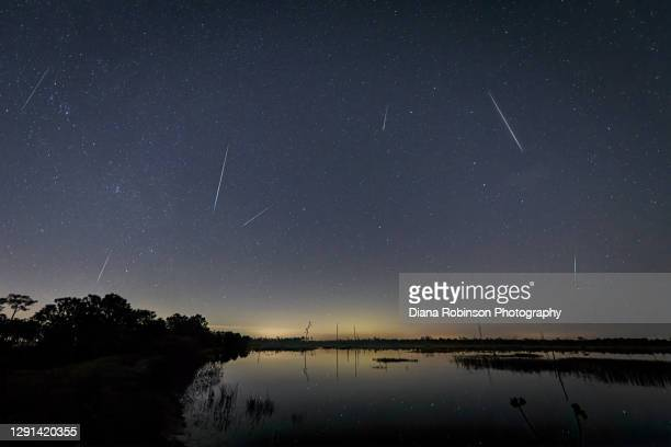 geminid meteor shower in fred c. babcock/cecil m. webb wildlife management area near punta gorda, florida - geminid meteor shower stock pictures, royalty-free photos & images