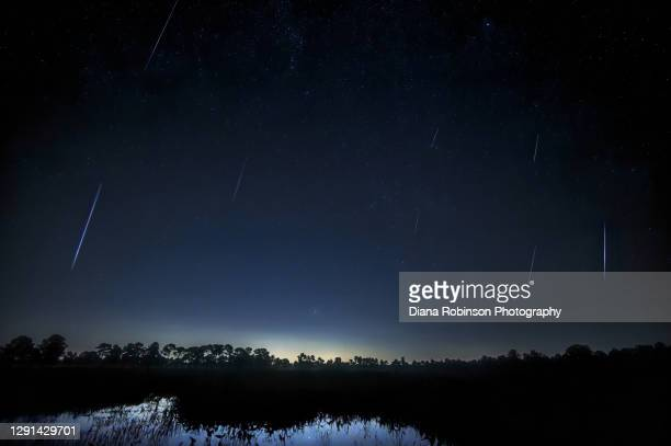 geminid meteor shower over pond in fred c. babcock/cecil m. webb wildlife management area near punta gorda, florida - geminid meteor shower stock pictures, royalty-free photos & images