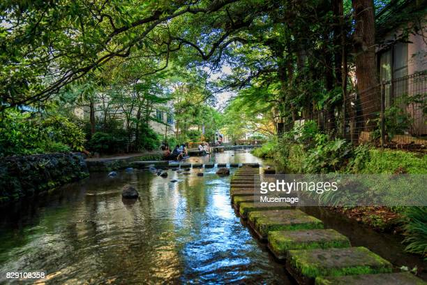 gempeigawa river - mishima city stock photos and pictures