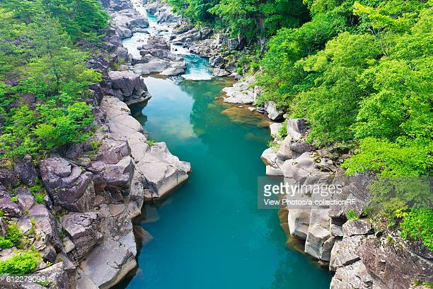 genbi river - iwate prefecture stock photos and pictures