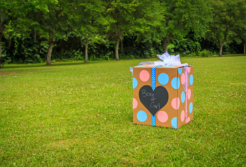 Gender Reveal Balloon Box 532030484