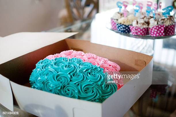 A Gender Reveal Cake and Cupcakes