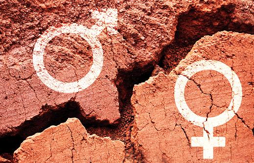 Gender symbols on earth background with a big crack 613773480