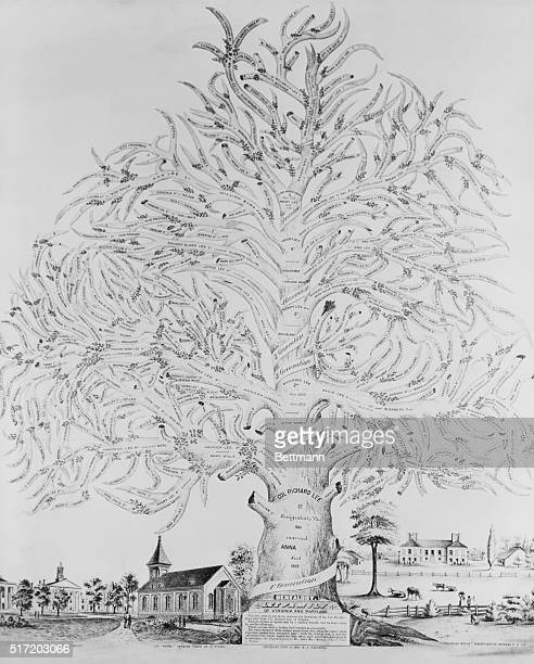Genealogy of family of Lee family of Virginia and Maryland in Family Tree branches and offshoots representing six generations of descendents Original...
