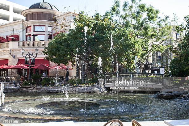 General atmosphere at the Grove on March 15 2014 in Los Angeles California