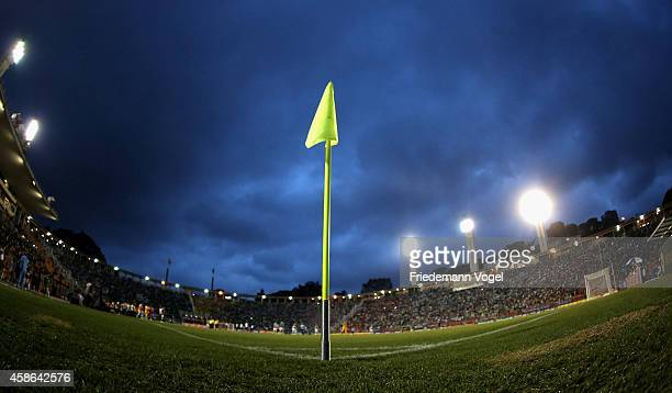 A general overview during the match between Palmeiras and Atletico MG for the Brazilian Series A 2014 at Pacaembu Stadium on November 8 2014 in Sao...