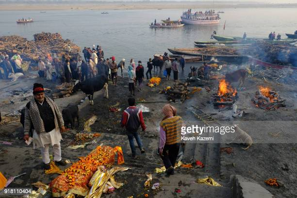 A general scene of the cremation ground in Manikarnika Ghat by the Ganga River seen with peopleu2019s activity burning pyres cows and dogs hanging...