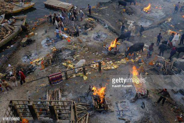 "General scene of the cremation ground in Manikarnika Ghat by the Ganga River seen with people""u2019s activity, burning pyres, cows hanging around and..."
