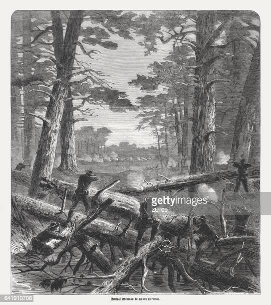 general sherman in south carolina, american civil war, published 1865 - general sherman stock photos and pictures