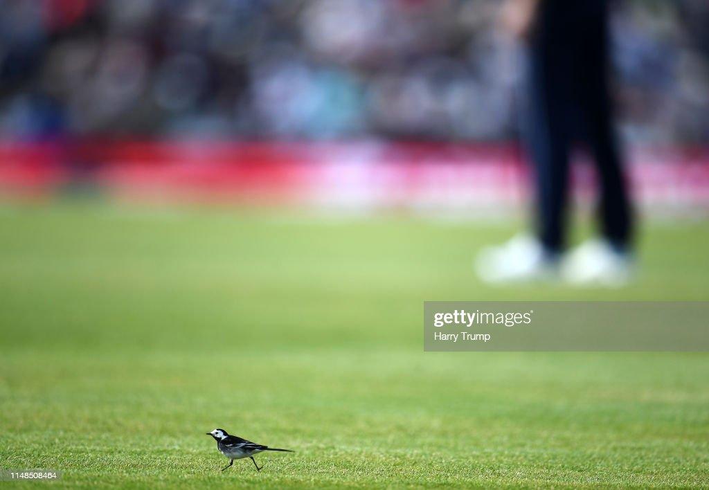 England v Pakistan - One Day International : News Photo