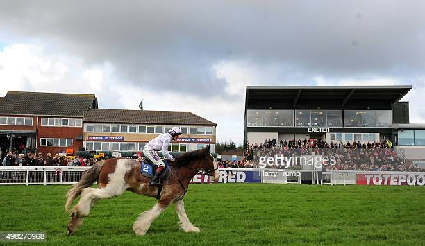 General view as a Clydesdale Horse makes its way past the grandstand at Exeter Racecourse on November 22 2015 in Exeter England
